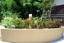 料亭みたいな和みの庭5